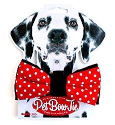 Witzige Krawatte für den Hund