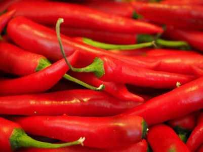Chilis und Peperoni scharf