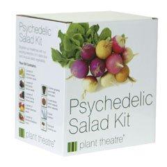 Salat ganz einfach selber züchten mit dem Salad Kit, 5 Sorten inklusive
