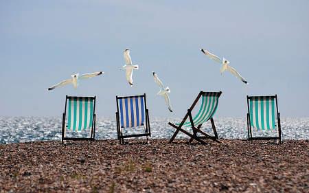Blick auf das Meer mit Möwen und Liegestühlen
