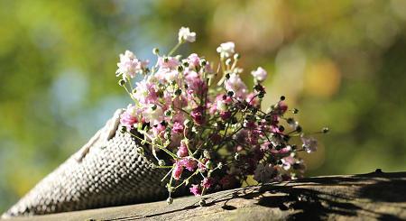 Blumen als Geschenk für die Mutti zum Muttertag