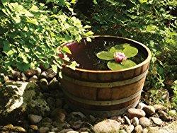 Miniteich Idee für den Garten