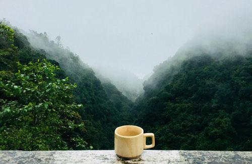 Eine Tasse Tee genießen